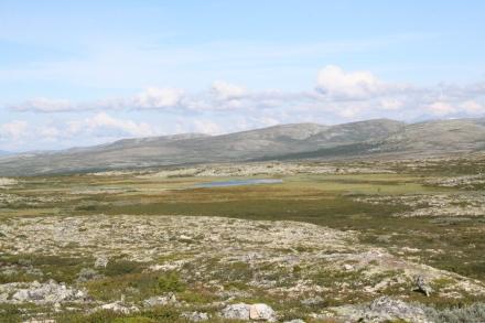 Noorwegen, zomer 2011