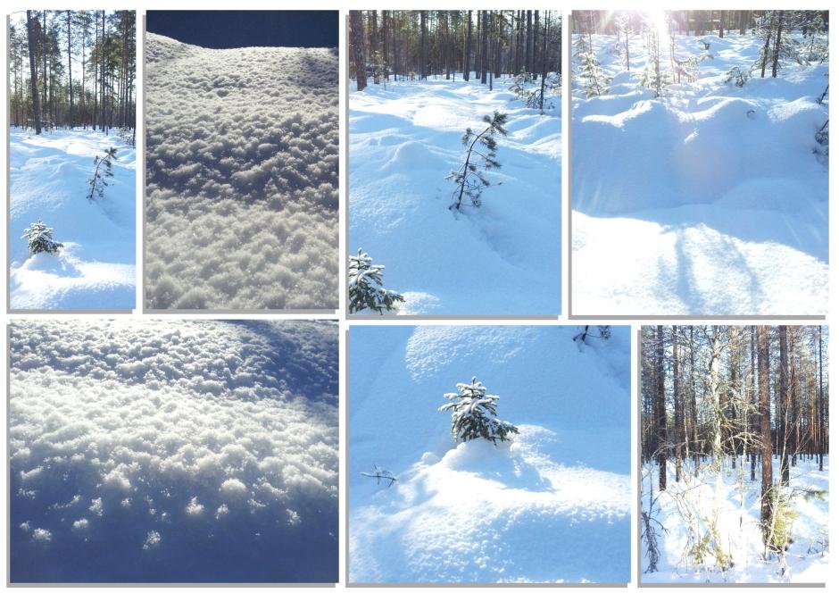 sneeuw 7
