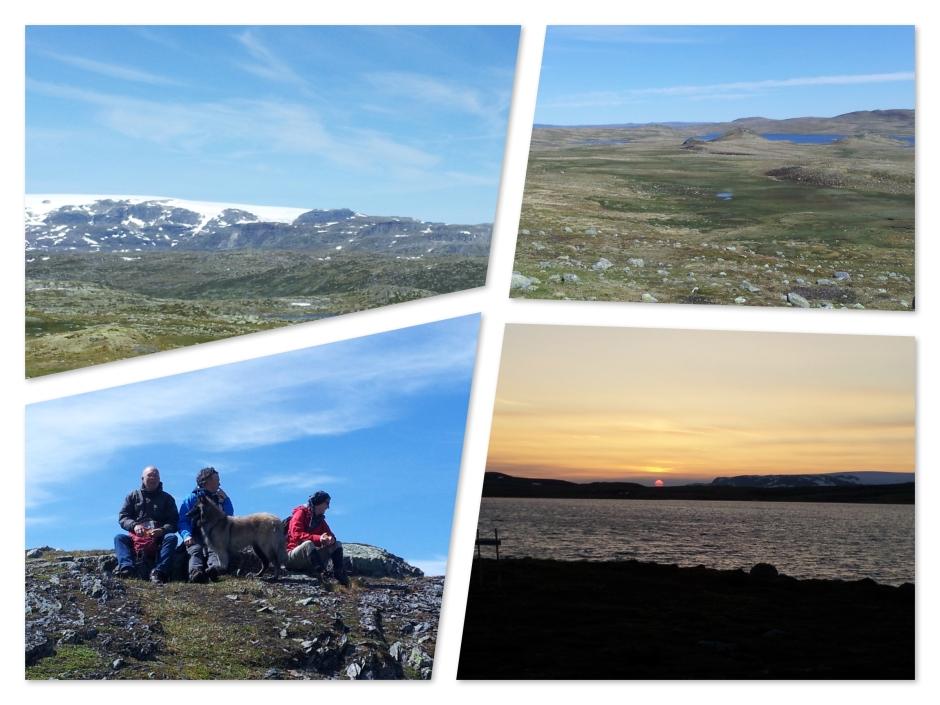 Hardangervidda2