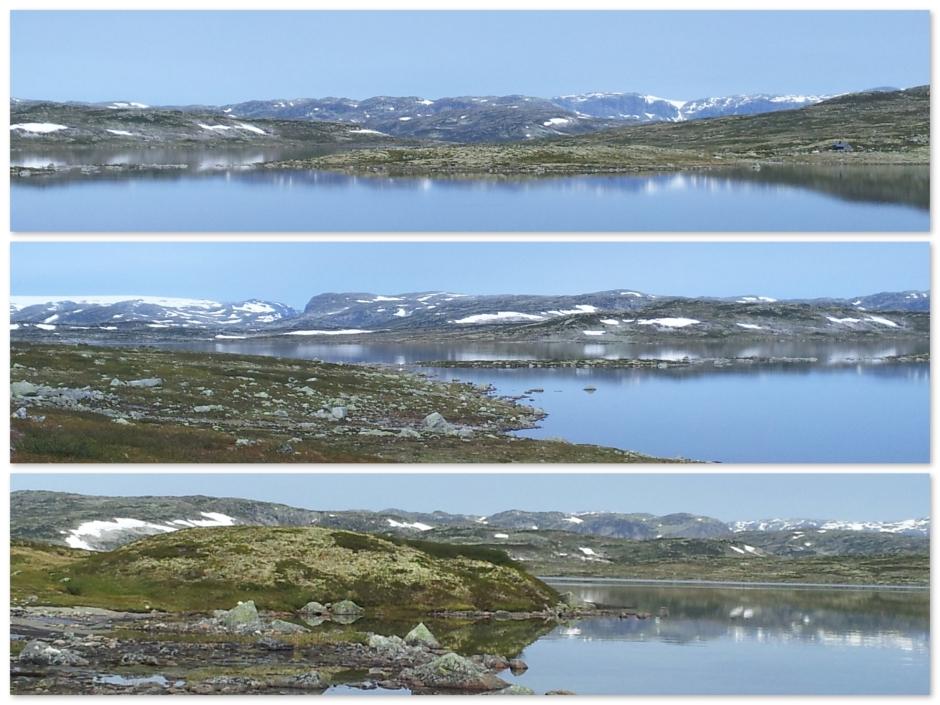 Hardangervidda3