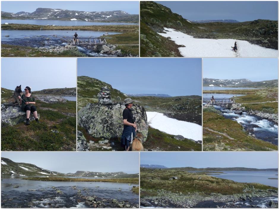 Hardangervidda4