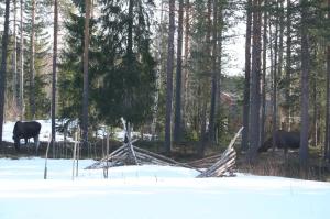 elgihagen2