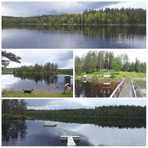 kgjetsjøen